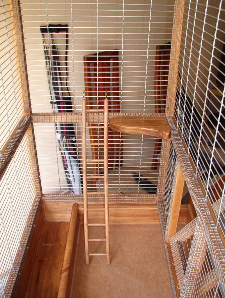 Interior de la jaula